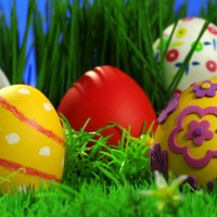huevos7